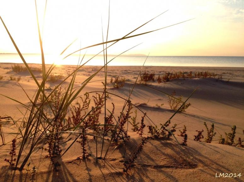 14_beach - Kopia