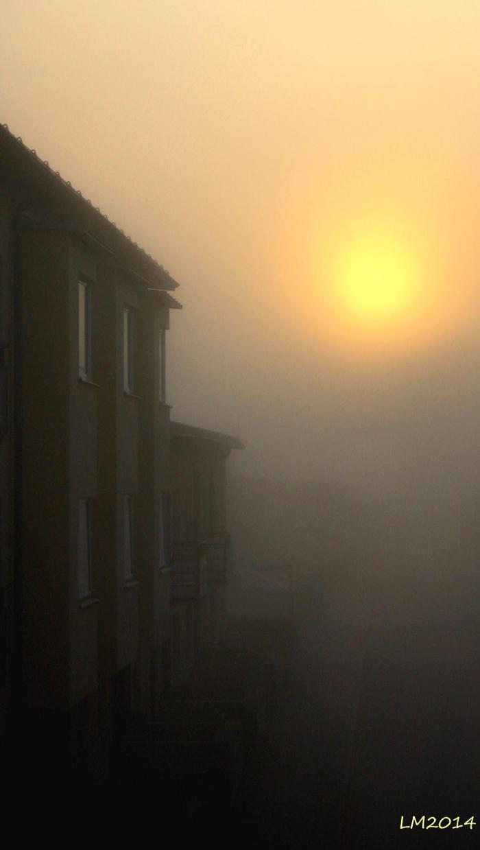 morgonsol - Kopia