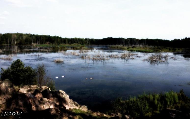 rosenkällasjön - Kopia