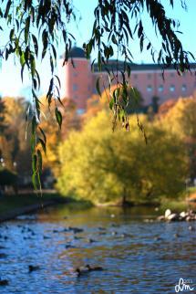 2015_IMG_0295_Uppsala