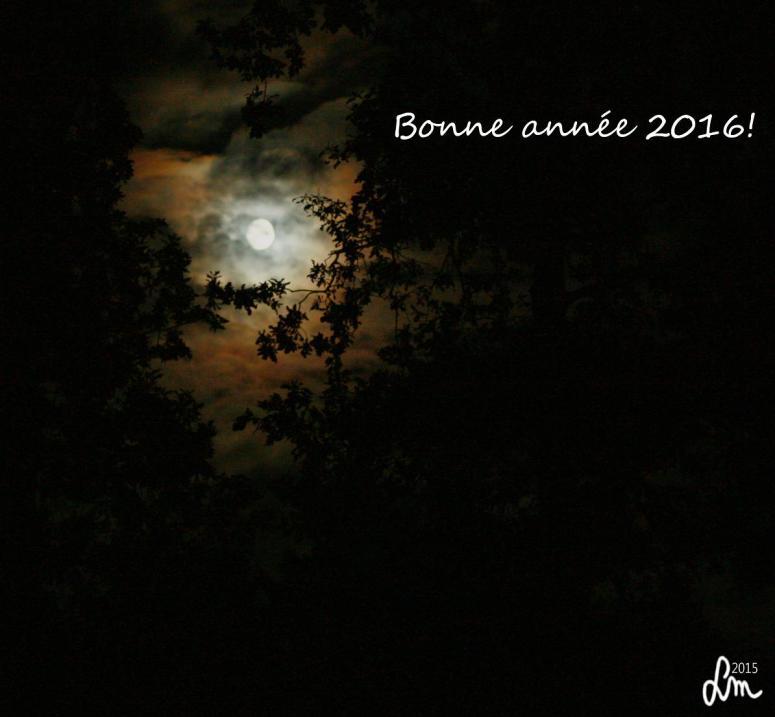 bonne annee 2016 - Kopia
